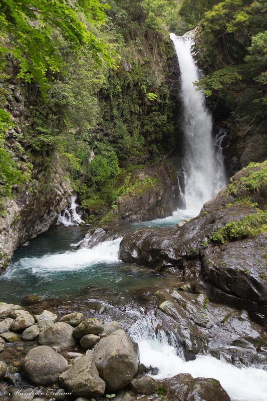 Kawazu Seven Waterfalls (Nanadaru) / Kamataki