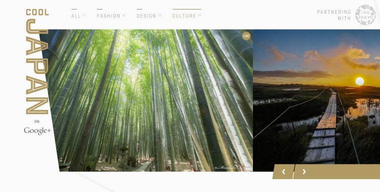 My picture was featured for the 20th time on the cover page of COOL JAPAN on Google+!