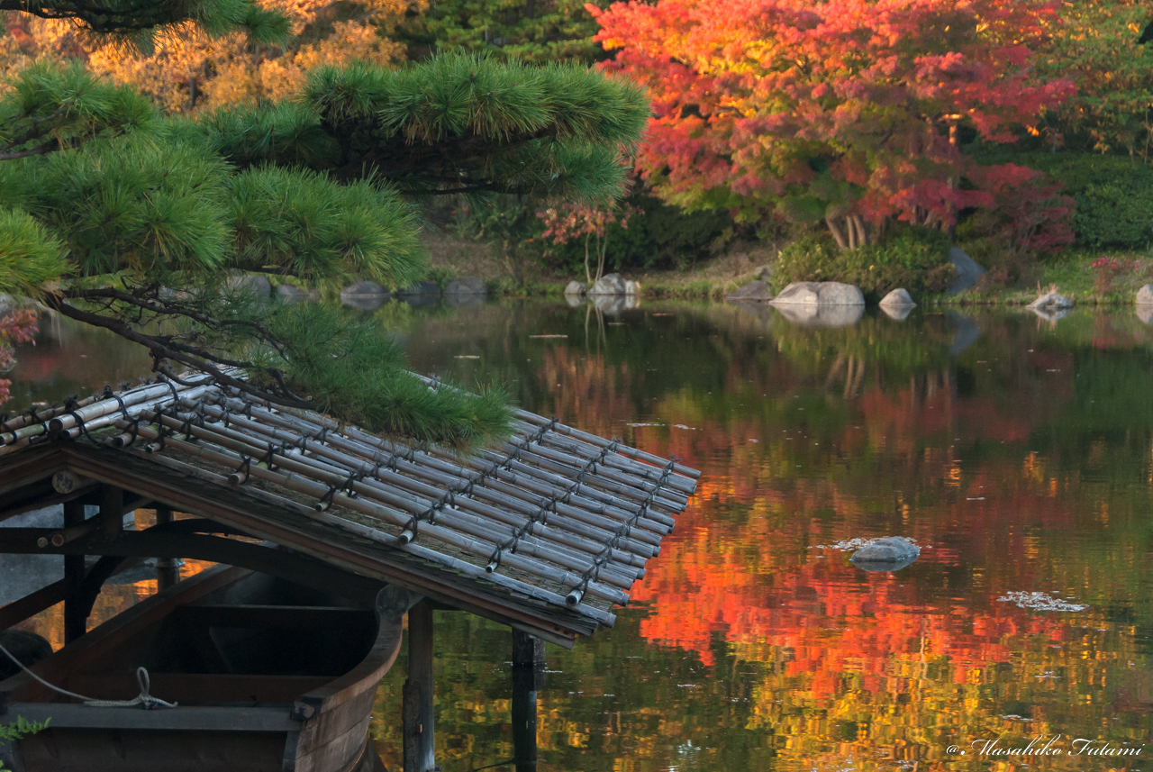 Sense of Japan in Autumn