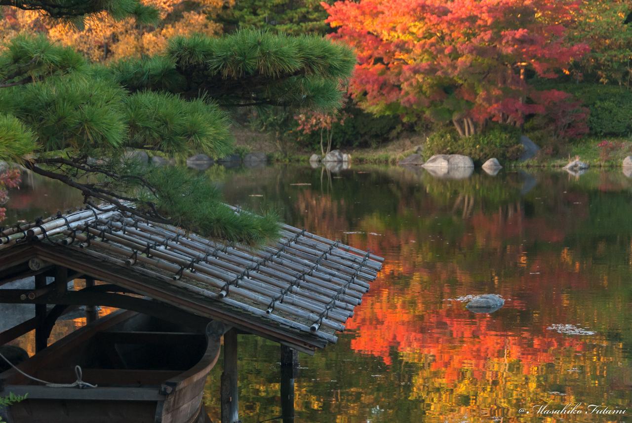 Sense of Japan in Autumn