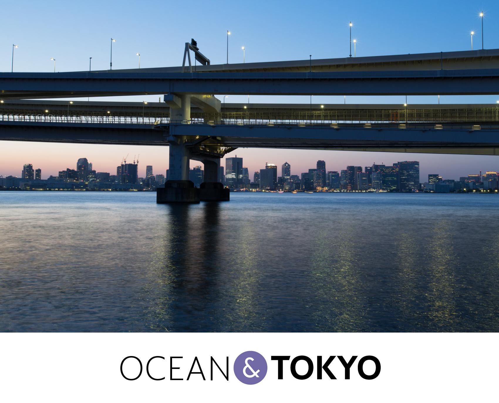 Magic Hour of Tokyo Bay