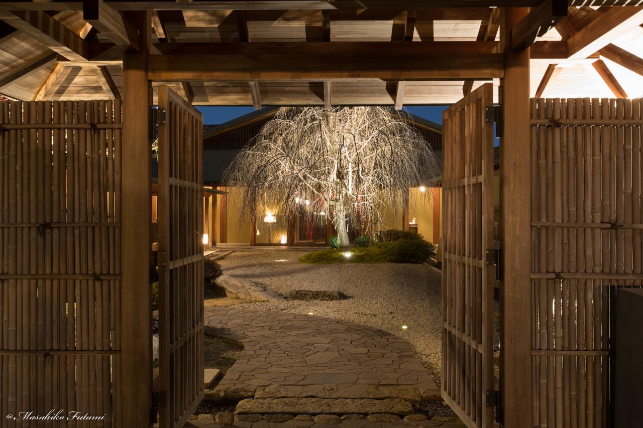 Night of The Tokugawaen