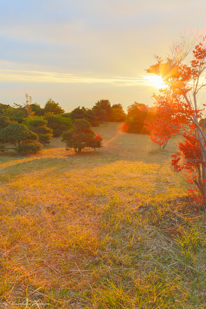Sunrise of Grassland in Autumn