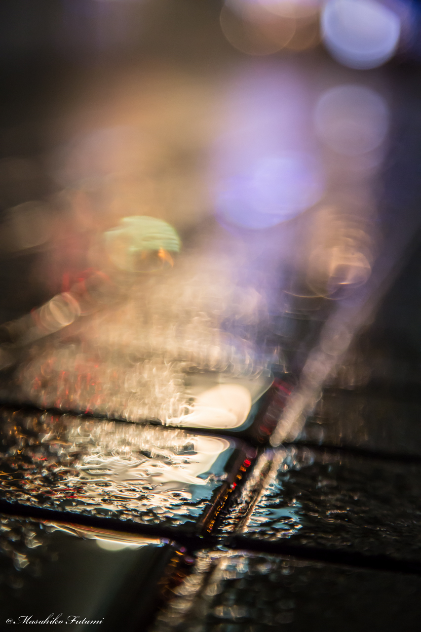 Shine of Rain