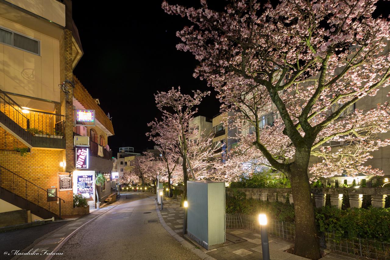Strolling in Itogawa