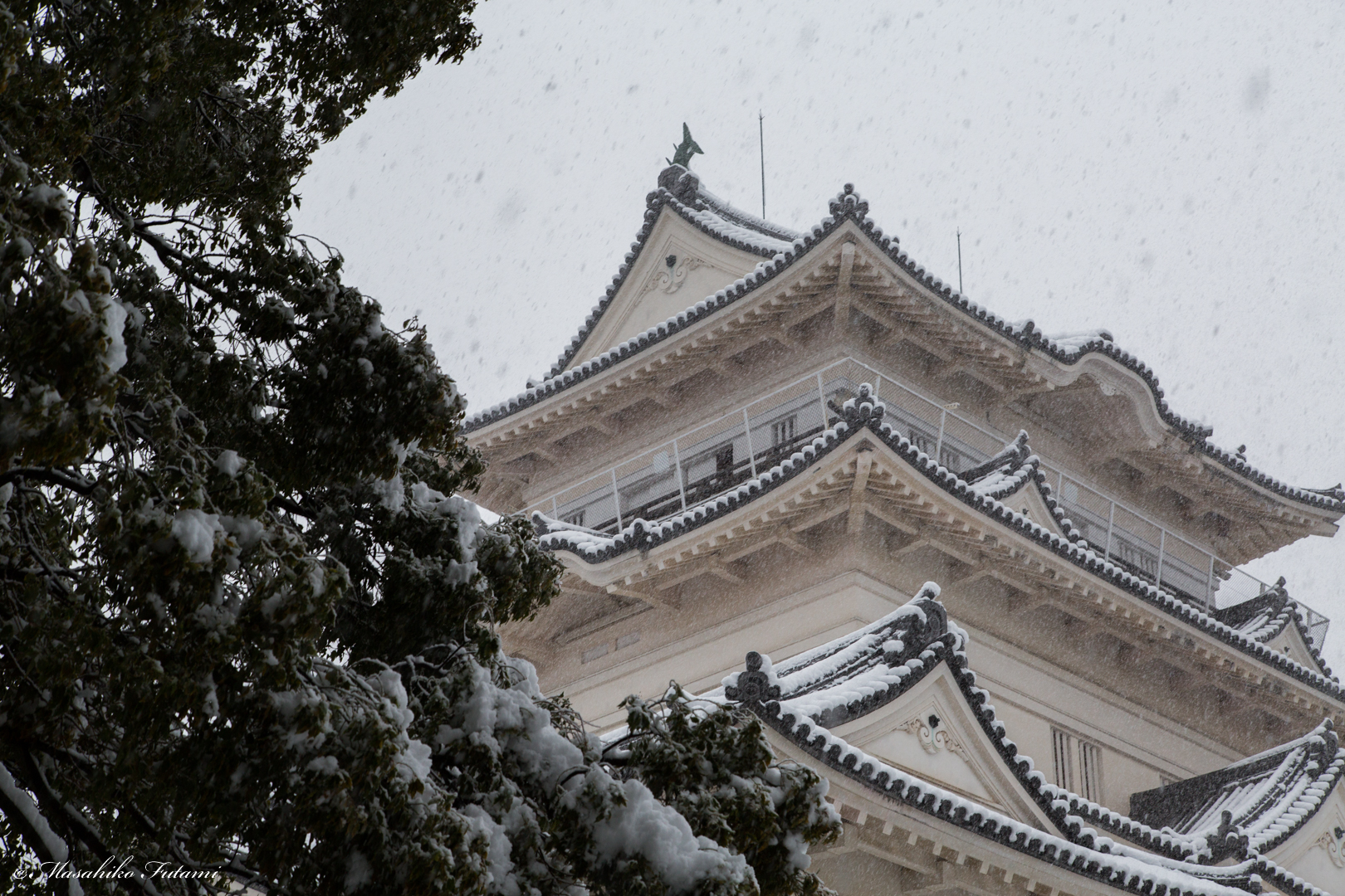 Blizzard and Odawara Castle Castle Tower
