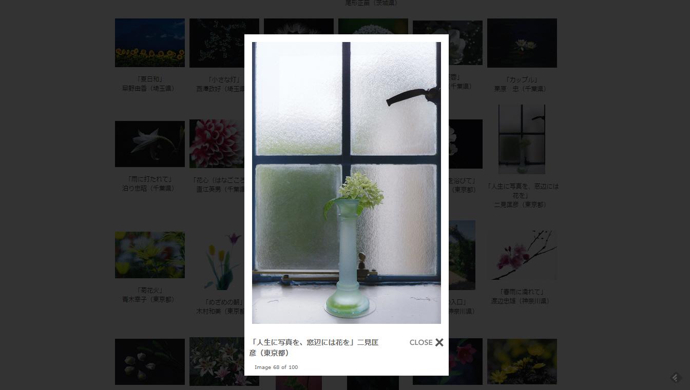 人生に写真を、窓辺には花を